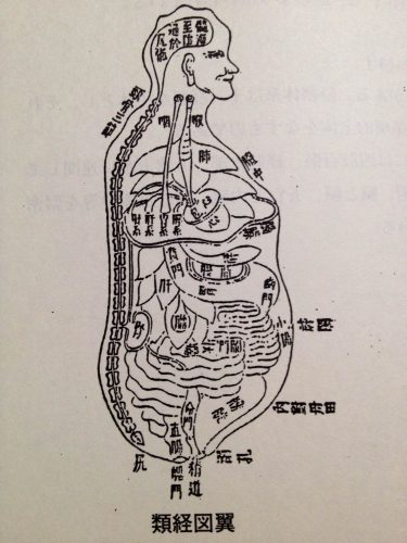 類経図翼 内景図